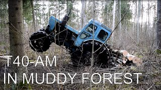 Tractor T-40 AM In Muddy Forest (1080p)