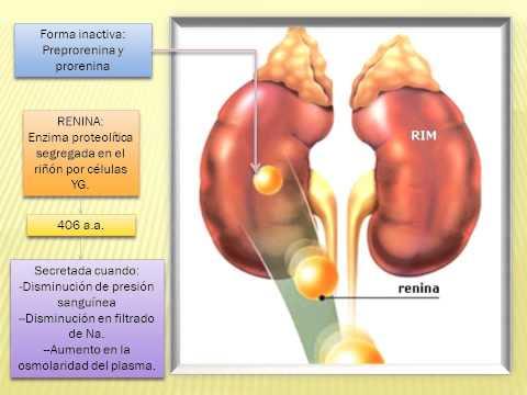 Fibrilacija atrija diroton