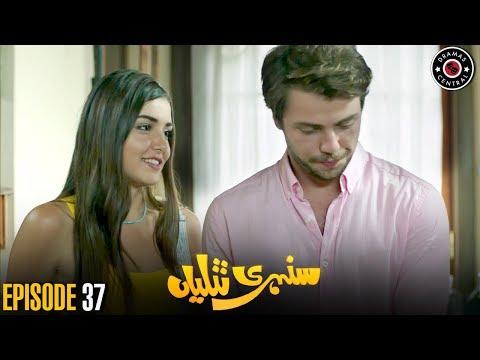 Sunehri Titliyan | Episode 37 | Turkish Drama | Hande Ercel | Dramas Central