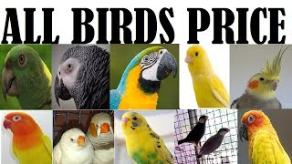 Birds Price - ฟรีวิดีโอออนไลน์ - ดูทีวีออนไลน์ - คลิปวิดีโอ
