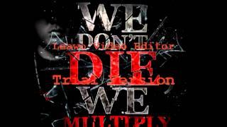 WDDWM - we don't die we multiply - 187 ( REMIX 2K13 )