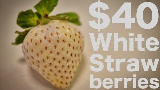 Japanese White Strawberries...for $40?!?!