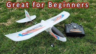 Eachine Mini Wing Dragon Beginner RC Plane Review ✈️