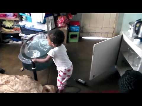 FUN WITH FAFI - Baby Fafi being naughty