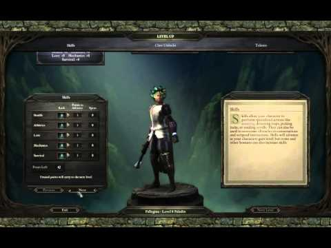 Steam Community :: Video :: Pillars of Eternity: White March 2