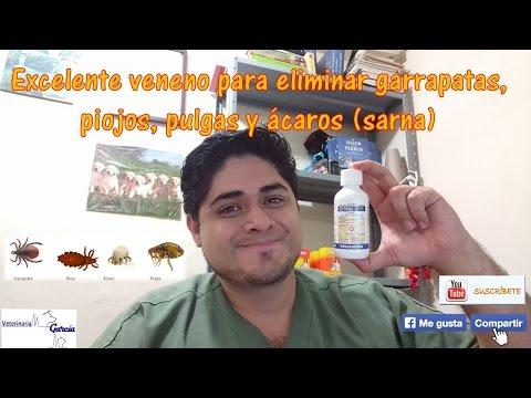 Tratament anti paraziti