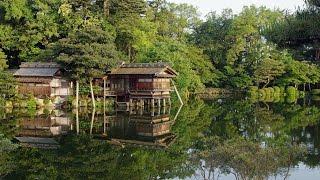 [4KUltraHD]新緑の金沢兼六園KanazawaKenrokuenJapaneseGardeninfreshgreenShotonREDEPIC