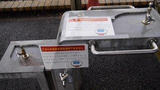 栃木県道の駅どまんなかたぬま水×ツカたび2016