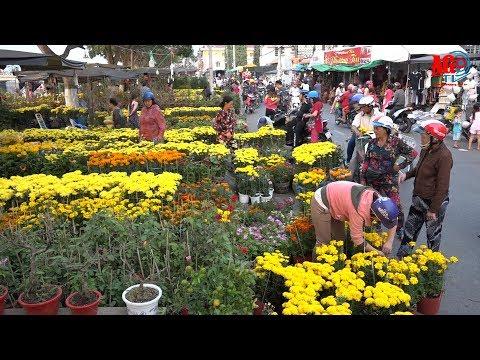 Nhộn nhịp chợ hoa xuân Mậu Tuất 2018