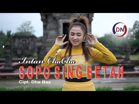 7 71 Mb Download Lagu Intan Chacha Sopo Sing Betah Mp3 Wahanamusik