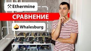 Где майнить эфир? Сравниние пулов Ethermine и Whalesburg.