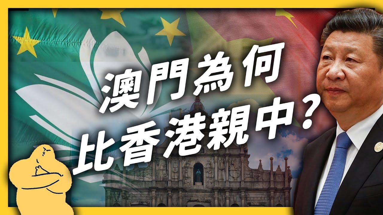 「一國兩制」乖寶寶?比起香港,澳門為什麼很少對中國抗議?《 左邊鄰居觀察日記 》EP 049|志祺七七