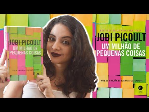 ARREBATADOR: UM MILHÃO DE PEQUENAS COISAS, DE JODI PICOULT | MINHA VIDA LITERÁRIA