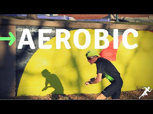 How to Run Faster: Build the Aerobic Engine FIRST