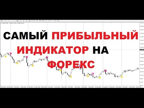 Отзывы о forex chief