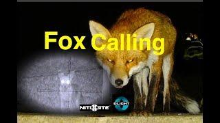Fox Calling ICOtec GC500 & Tikka T3