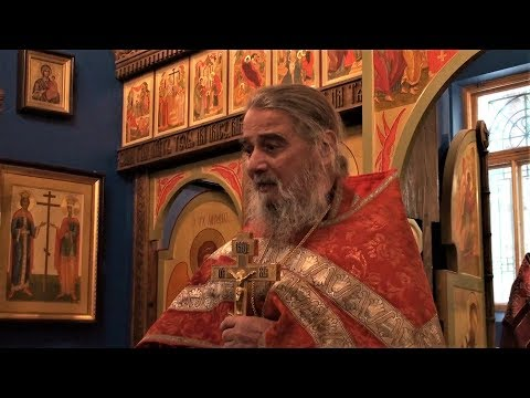 РПАЦ. Отец Михаил Ардов о т.н. \