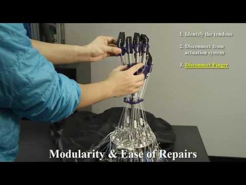 Anthropomorphic Modular Robotic Hand