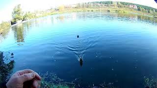 Рыбалка в каменске-уральском сунгуль форум