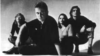 Mekons - Learning to Live on Your Own