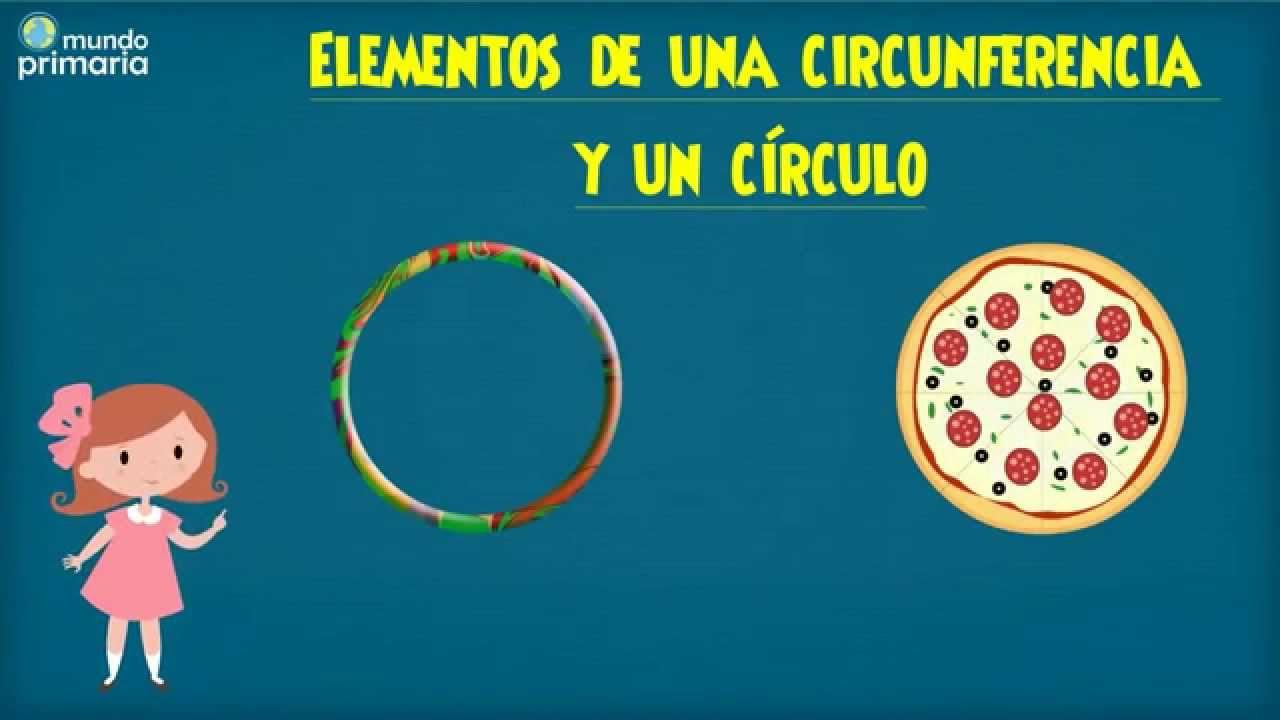 Elementos de la circunferencia y círculo para niños