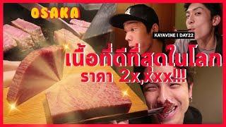 เนื้อโกเบที่ดีที่สุดในโลก!!! ราคา2x,xxx | KAYAVINE