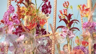 Chinas Largest Floral Design Contest Opens In Guangdong Province