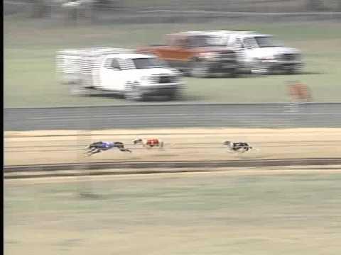 Race 45