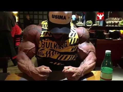 Lanatomie pour les muscles de la zone humérale