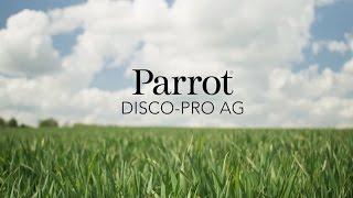 Видеообзор: DISCO-Pro AG