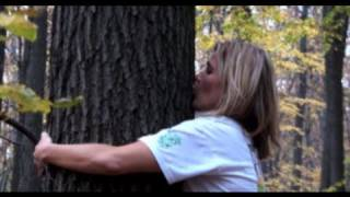 How to tree hug, become a tree hugger and excel at tree hugging to raise your vibration!!!
