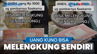 Viral! Uang Kuno Gambar Soekarno Ditawar Rp5 Miliar karena Bisa Melengkung Sendiri
