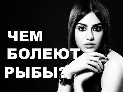 БОЛЕЗНИ АСТРОЛОГИЧЕСКИЕ ЗНАКА РЫБ. АСТРОМЕДИЦИНА.