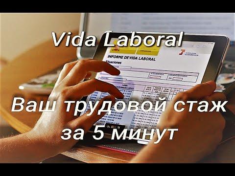 Трудовой стаж в Испании | Как за 5 минут получить  электронный сертификат  De Vida Laboral