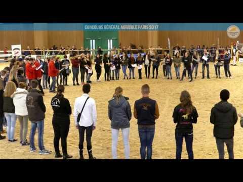 Voir la vidéo : Carrière Équine du 02 mars 2017, partie 4