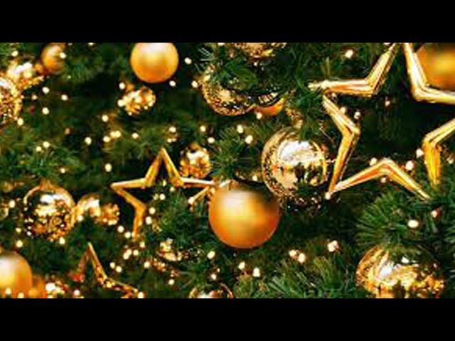 Подарки, украшения и ёлки в одном месте