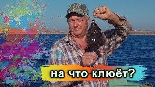 Наживка для ловли океанской рыбы