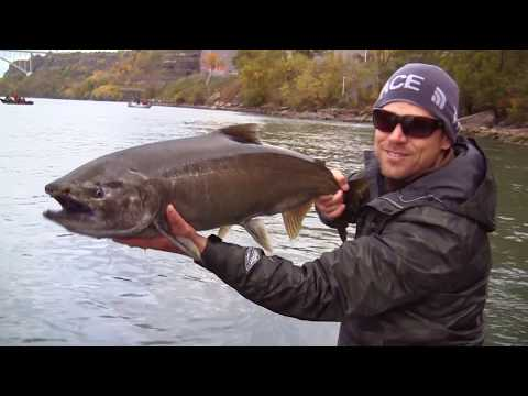A year of fishing in Buffalo Niagara New York