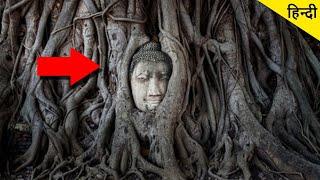 Mysterious Buddha head appearing from banyan Tree! बरगद के पेड़ में बुद्ध का सिर प्रकट होने का रहस्य