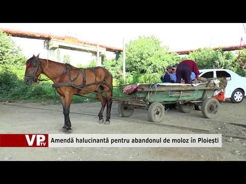 Amendă halucinantă pentru abandonul de moloz în Ploiești