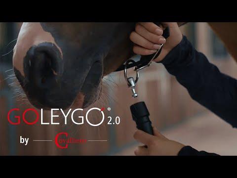 Goleygo 2.0 by Covalliero / Führstrick Pferd