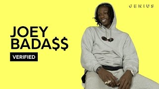 Joey Bada$$ 'Land of the Free' Official Lyrics & Meaning | Verified