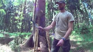 Jak se naučit vrhat nože