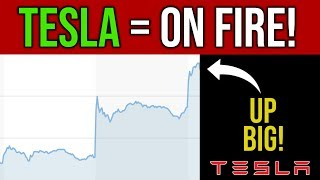 Tesla Stock Is On Fire 🔥 Q2 Vehicle Deliveries & Production