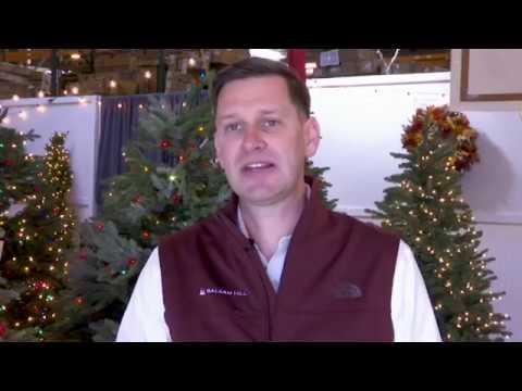 Christmas tree farmers take aim at fake trees