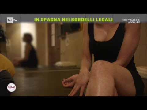 Donna sexy con un cane per guardare i video