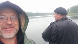 На что ловить щуку в дождь