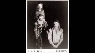 swans - live - 6 jun. 1988 - paradiso, amsterdam