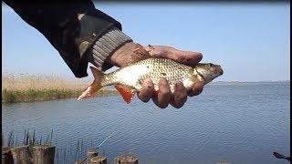 Рыбалка на кардашинском лимане