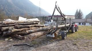 Rimorchio Forestale Con Pinza Carica Tronchi Forestry Trailer Forstanhänger